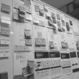 User Insights | User Research Participant Notes